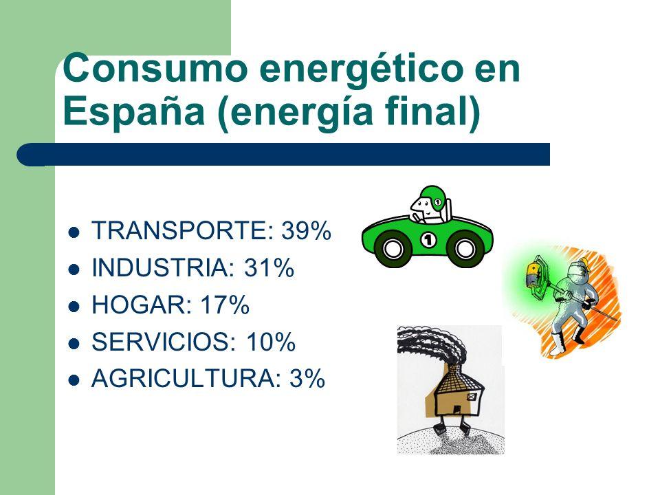 Consumo energético en las familias españolas La energía que consumen las familias se acerca al 30% del consumo energético total en España, y se reparte en: 18% en la vivienda 12% en el del coche.