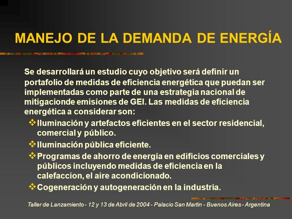 Taller de Lanzamiento - 12 y 13 de Abril de 2004 - Palacio San Martin - Buenos Aires - Argentina MANEJO DE LA DEMANDA DE ENERGÍA Se desarrollará un estudio cuyo objetivo será definir un portafolio de medidas de eficiencia energética que puedan ser implementadas como parte de una estrategia nacional de mitigacionde emisiones de GEI.