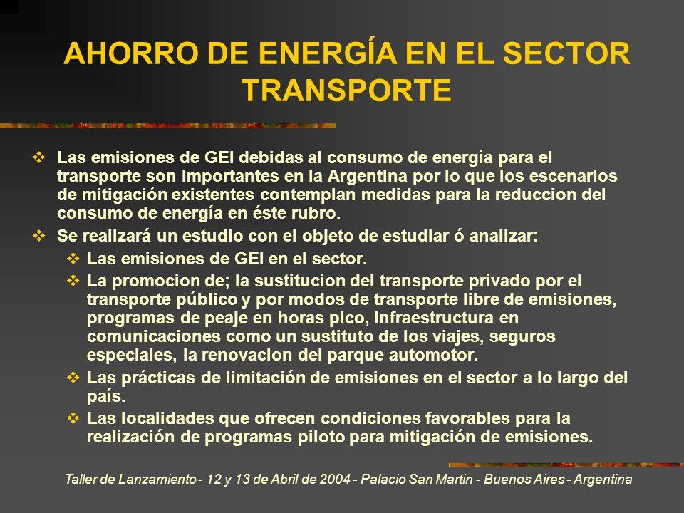 Taller de Lanzamiento - 12 y 13 de Abril de 2004 - Palacio San Martin - Buenos Aires - Argentina AHORRO DE ENERGÍA EN EL SECTOR TRANSPORTE Las emisiones de GEI debidas al consumo de energía para el transporte son importantes en la Argentina por lo que los escenarios de mitigación existentes contemplan medidas para la reduccion del consumo de energía en éste rubro.