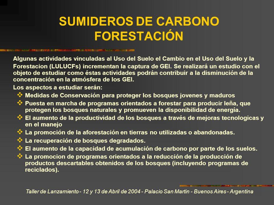 Taller de Lanzamiento - 12 y 13 de Abril de 2004 - Palacio San Martin - Buenos Aires - Argentina SUMIDEROS DE CARBONO FORESTACIÓN Algunas actividades vinculadas al Uso del Suelo el Cambio en el Uso del Suelo y la Forestacion (LULUCFs) incrementan la captura de GEI.
