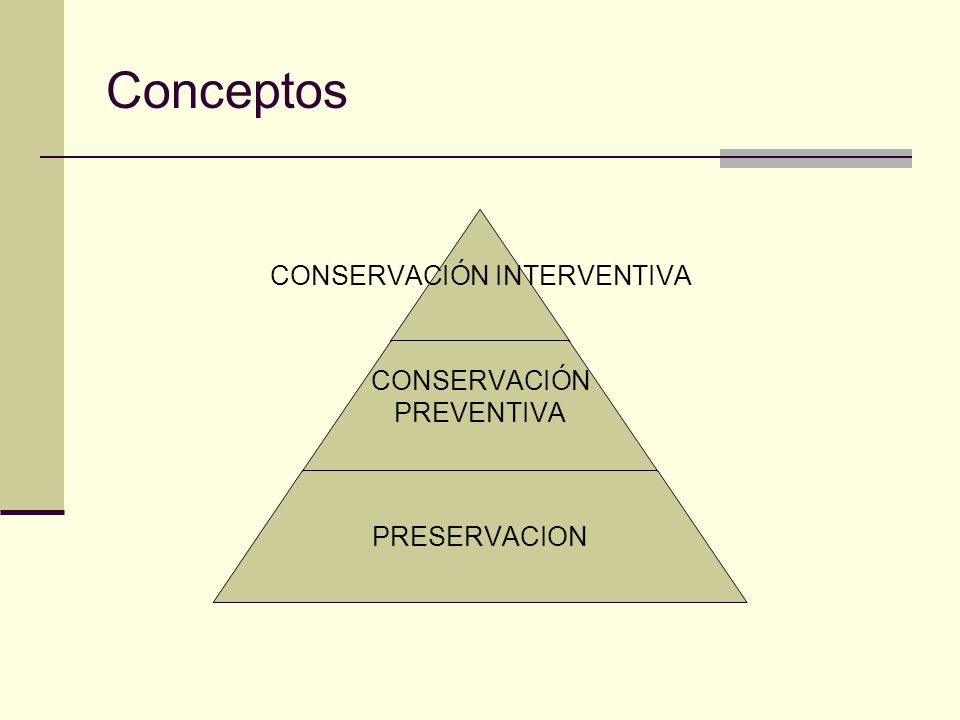 Conceptos CONSERVACIÓN INTERVENTIVA CONSERVACIÓN PREVENTIVA PRESERVACION