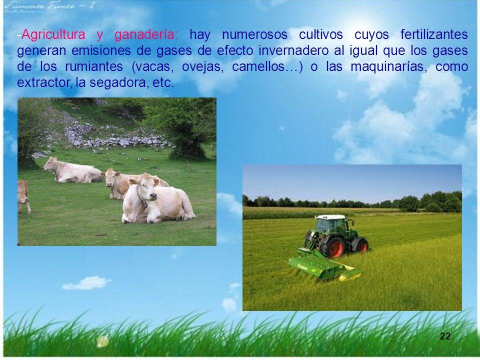 22 -Agricultura y ganadería: hay numerosos cultivos cuyos fertilizantes generan emisiones de gases de efecto invernadero al igual que los gases de los