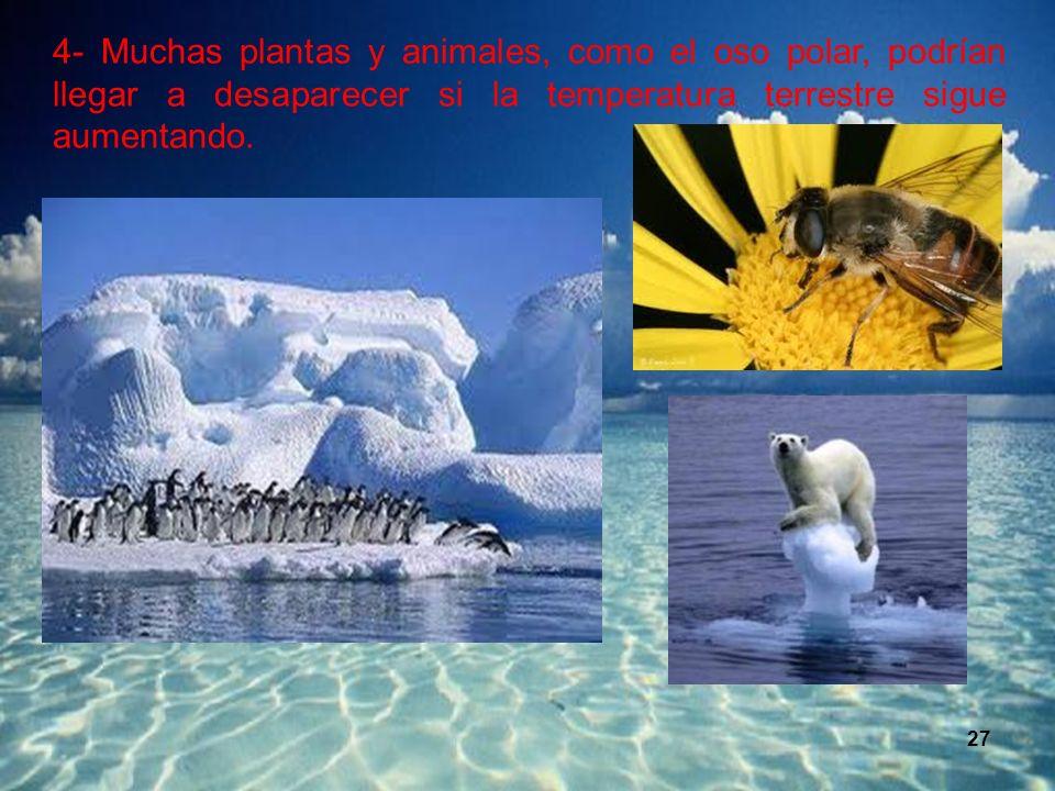 27 4- Muchas plantas y animales, como el oso polar, podrían llegar a desaparecer si la temperatura terrestre sigue aumentando.