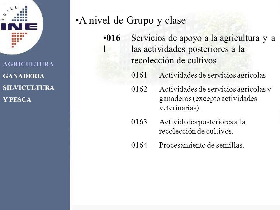 AGRICULTURA GANADERIA SILVICULTURA Y PESCA A nivel de Grupo y clase 016Servicios de apoyo a la agricultura y a llas actividades posteriores a la recol