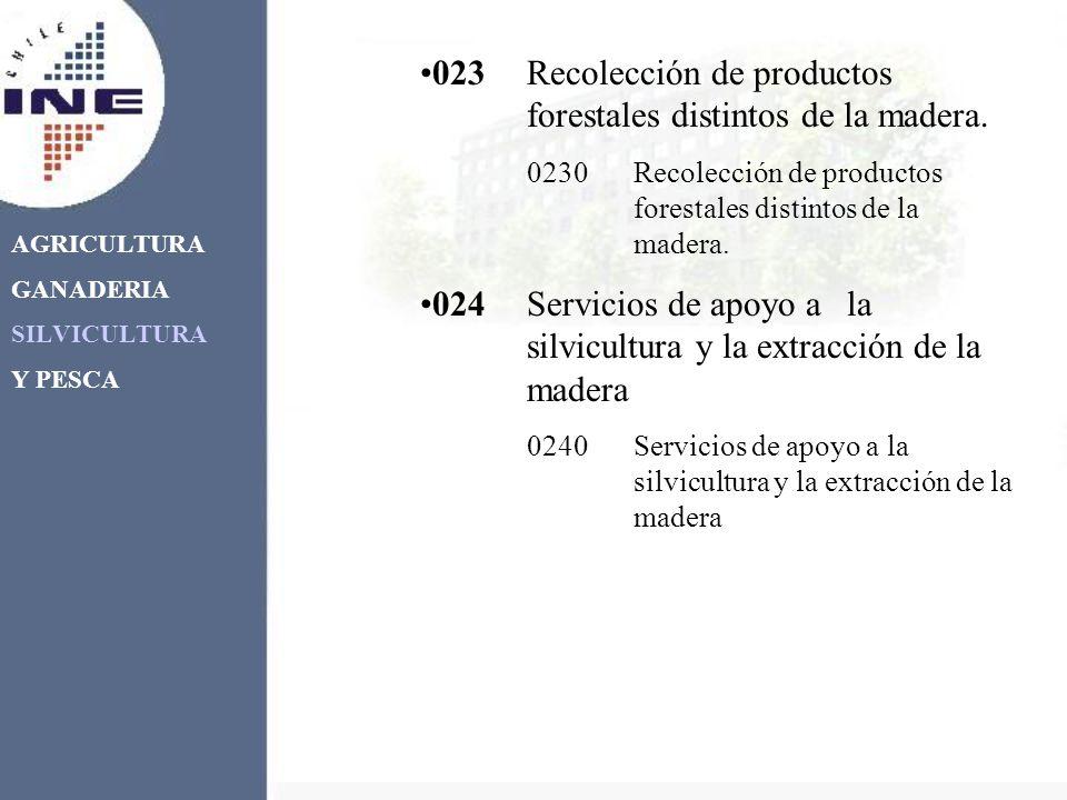 AGRICULTURA GANADERIA SILVICULTURA Y PESCA 023Recolección de productos forestales distintos de la madera. 0230Recolección de productos forestales dist