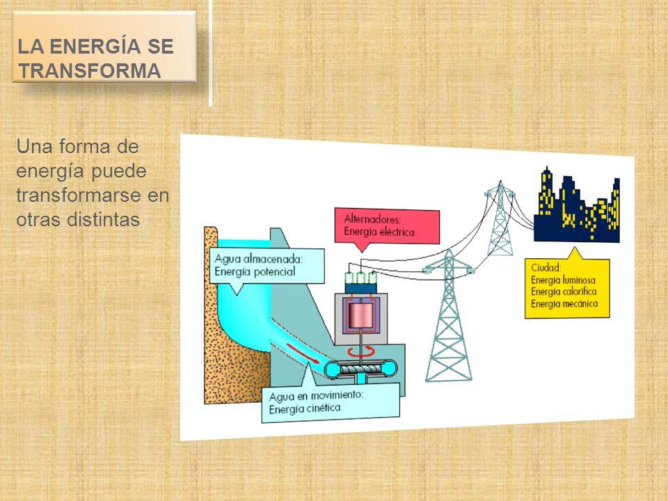 LA ENERGÍA SE TRANSFORMA Una forma de energía puede transformarse en otras distintas