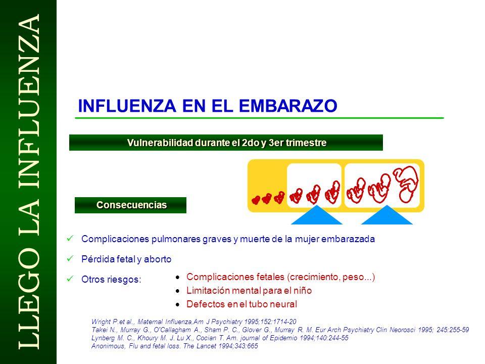 LLEGO LA INFLUENZA LAS ENFERMEDADES RESPIRATORIAS POR INFLUENZA PRODUCEN INCAPACIDAD Kavet, ( National Health Surveys ) Los trabajadores afectados se