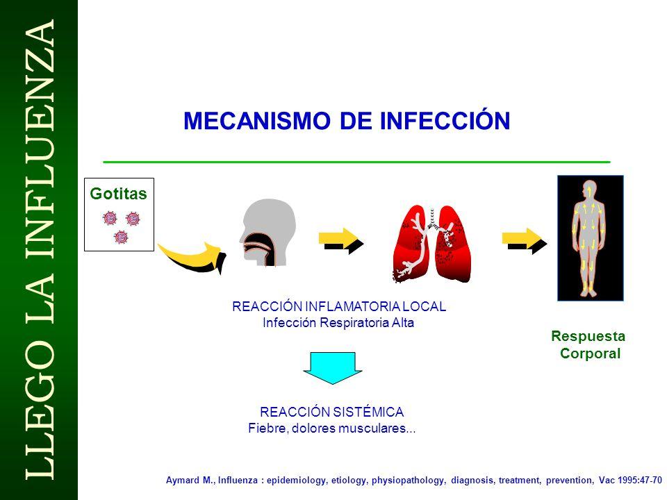 LLEGO LA INFLUENZA ARGUMENTOS PARA LA VACUNACIÓN EMPRESARIAL CONTRA INFLUENZA EPIDEMIOLÓGICOS Enfermedad altamente contagiosa, 3-5 Días de Incapacidad