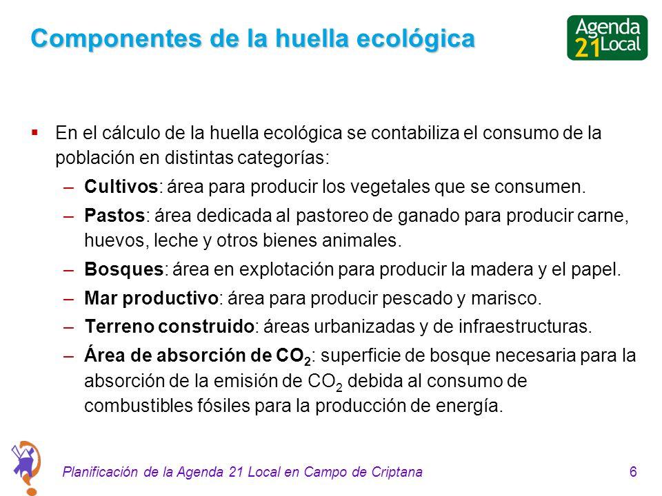 6Planificación de la Agenda 21 Local en Campo de Criptana Componentes de la huella ecológica En el cálculo de la huella ecológica se contabiliza el co