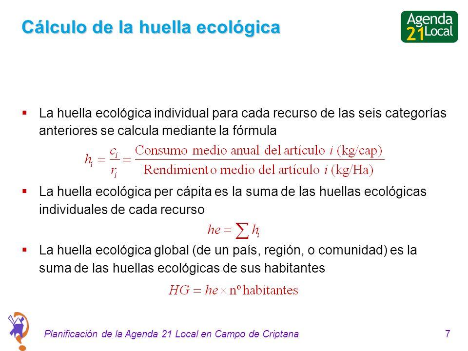 7Planificación de la Agenda 21 Local en Campo de Criptana Cálculo de la huella ecológica La huella ecológica individual para cada recurso de las seis