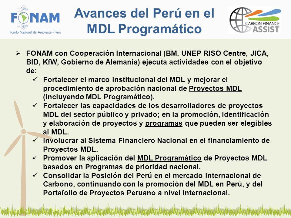 Avances del Perú en el MDL Programático FONAM con Cooperación Internacional (BM, UNEP RISO Centre, JICA, BID, KfW, Gobierno de Alemania) ejecuta actividades con el objetivo de: Fortalecer el marco institucional del MDL y mejorar el procedimiento de aprobación nacional de Proyectos MDL (incluyendo MDL Programático).