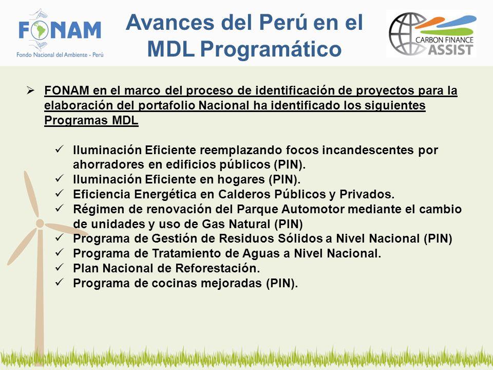 Avances del Perú en el MDL Programático FONAM en el marco del proceso de identificación de proyectos para la elaboración del portafolio Nacional ha identificado los siguientes Programas MDL Iluminación Eficiente reemplazando focos incandescentes por ahorradores en edificios públicos (PIN).