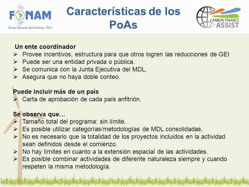 Características de los PoAs Un ente coordinador Provee incentivos, estructura para que otros logren las reducciones de GEI Puede ser una entidad privada o pública.
