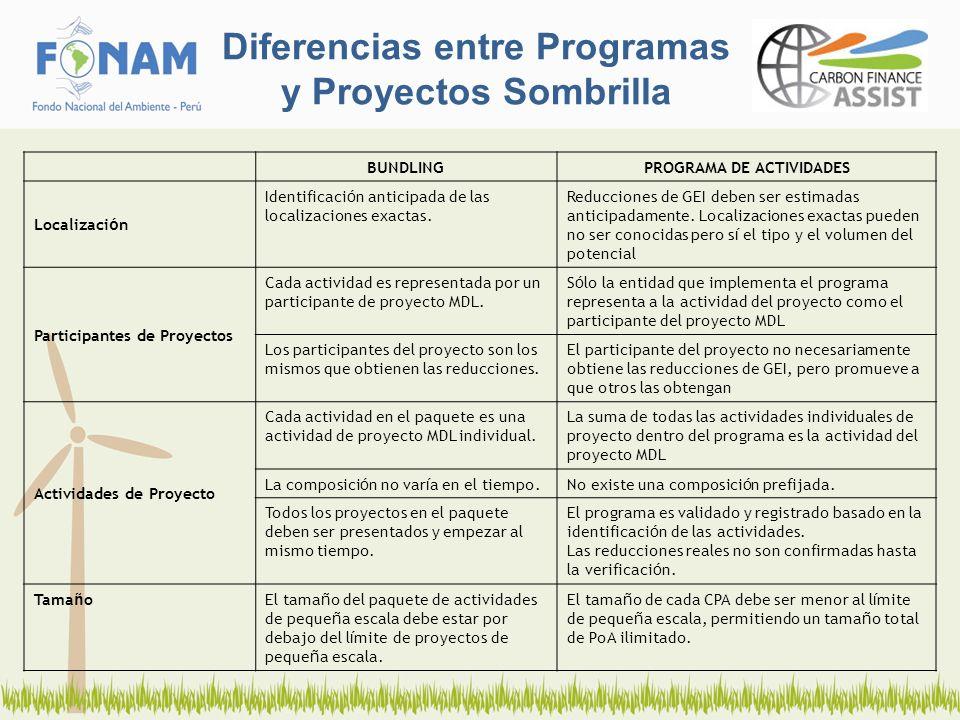 Diferencias entre Programas y Proyectos Sombrilla BUNDLINGPROGRAMA DE ACTIVIDADES Localizaci ó n Identificaci ó n anticipada de las localizaciones exactas.