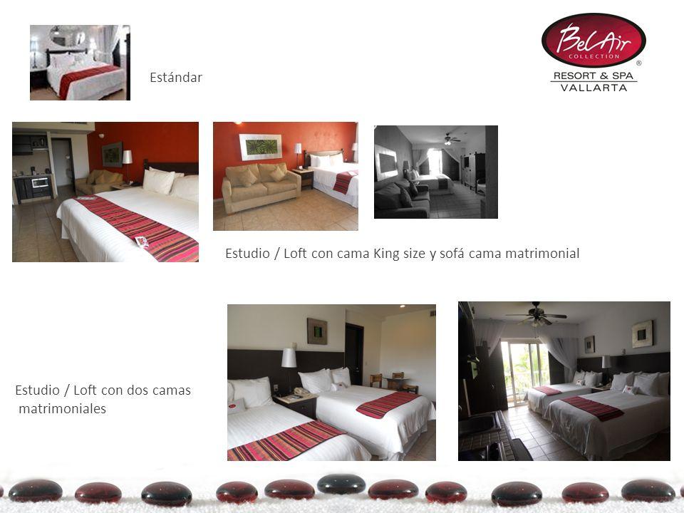 Estándar Estudio / Loft con dos camas matrimoniales Estudio / Loft con cama King size y sofá cama matrimonial
