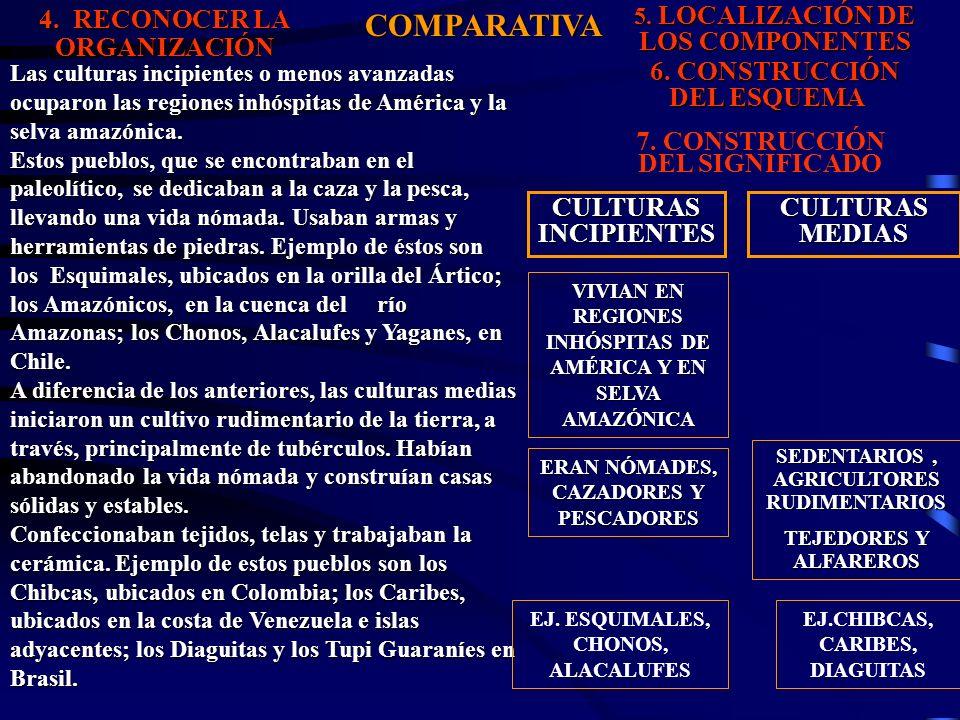 4.RECONOCER LA ORGANIZACIÓN COMPARATIVA 5. LOCALIZACIÓN DE LOS COMPONENTES 6.
