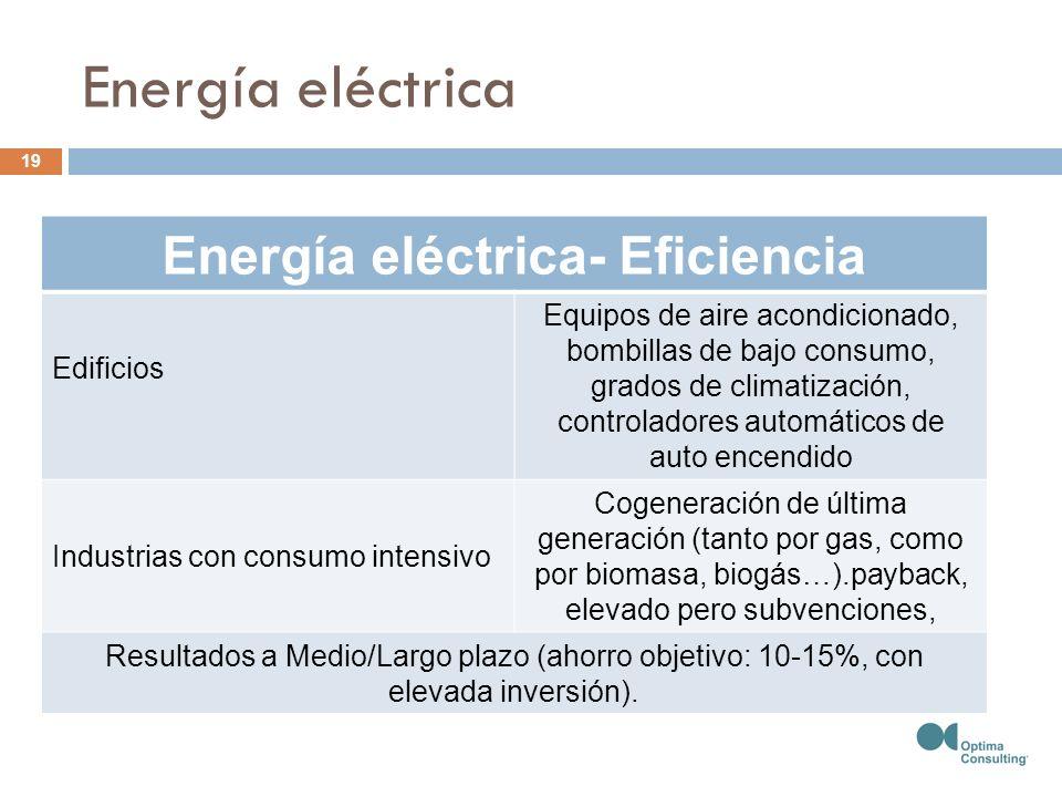 Energía eléctrica- Eficiencia Edificios Equipos de aire acondicionado, bombillas de bajo consumo, grados de climatización, controladores automáticos de auto encendido Industrias con consumo intensivo Cogeneración de última generación (tanto por gas, como por biomasa, biogás…).payback, elevado pero subvenciones, Resultados a Medio/Largo plazo (ahorro objetivo: 10-15%, con elevada inversión).