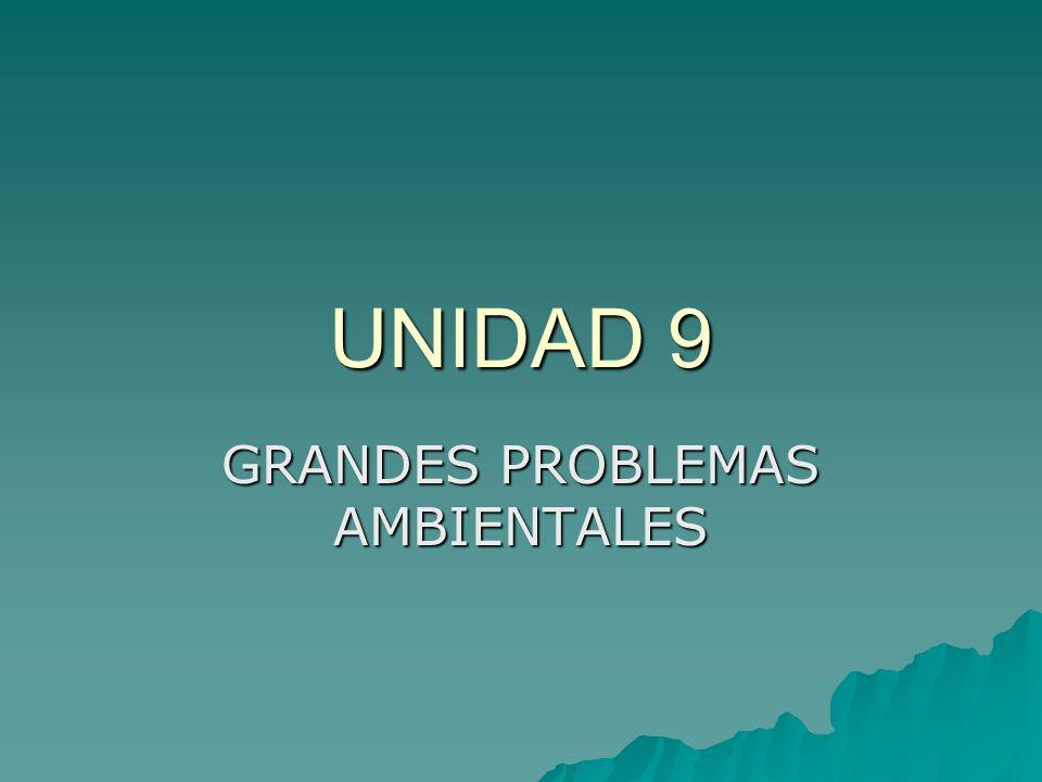 UNIDAD 9 GRANDES PROBLEMAS AMBIENTALES