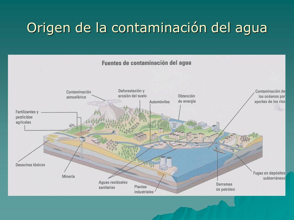 Origen de la contaminación del agua