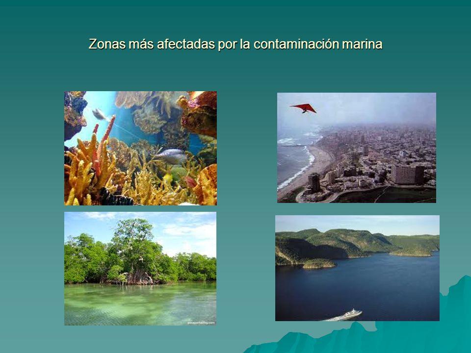 Zonas más afectadas por la contaminación marina