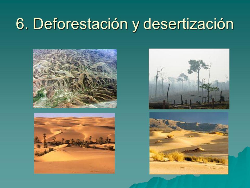 6. Deforestación y desertización