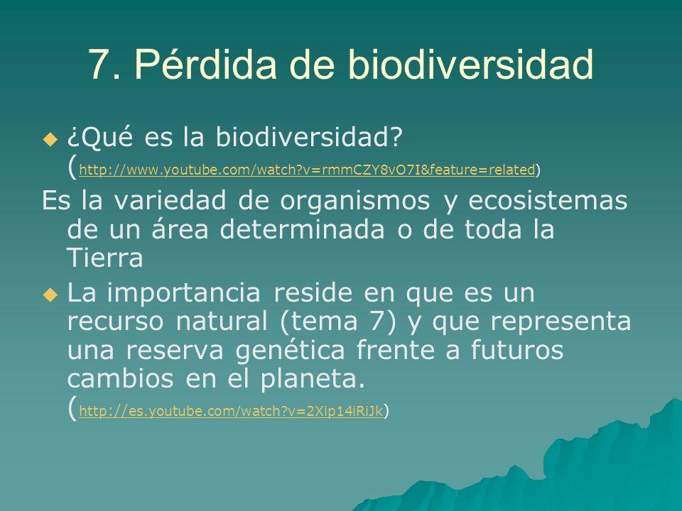 7. Pérdida de biodiversidad ¿Qué es la biodiversidad? ( http://www.youtube.com/watch?v=rmmCZY8vO7I&feature=related) http://www.youtube.com/watch?v=rmm