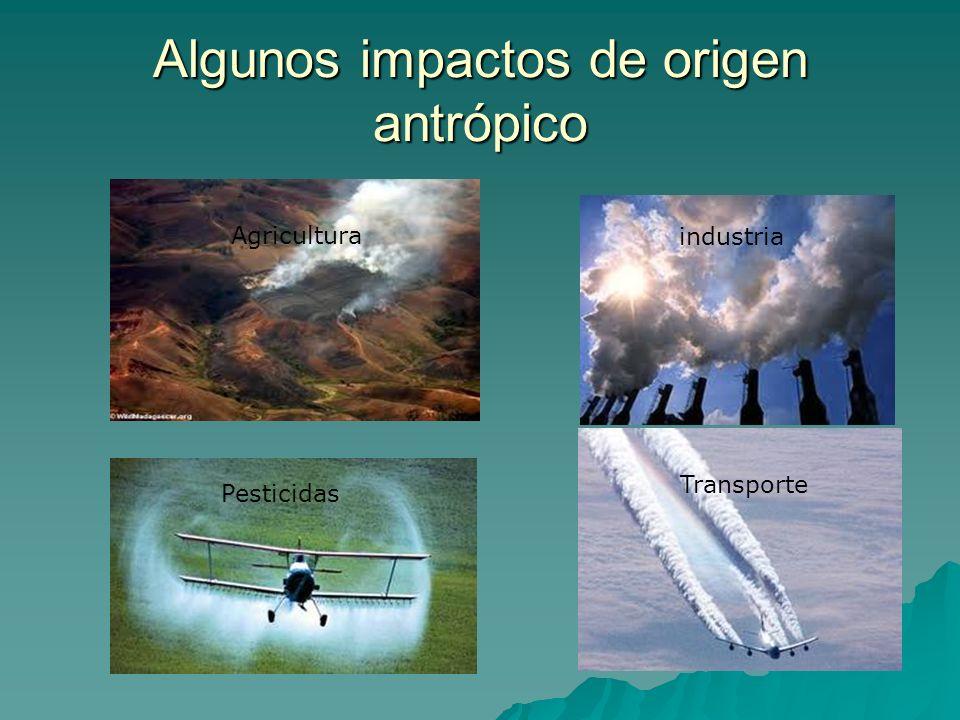 Algunos impactos de origen antrópico Agricultura industria Pesticidas Transporte