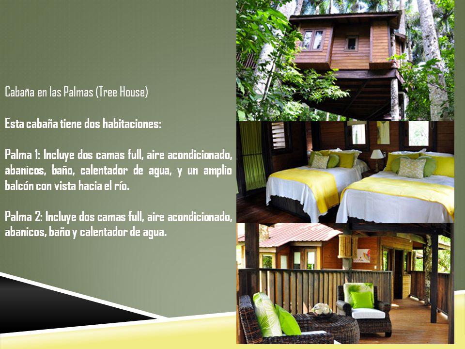 Cabaña en las Palmas (Tree House) Esta cabaña tiene dos habitaciones: Palma 1: Incluye dos camas full, aire acondicionado, abanicos, baño, calentador de agua, y un amplio balcón con vista hacia el río.