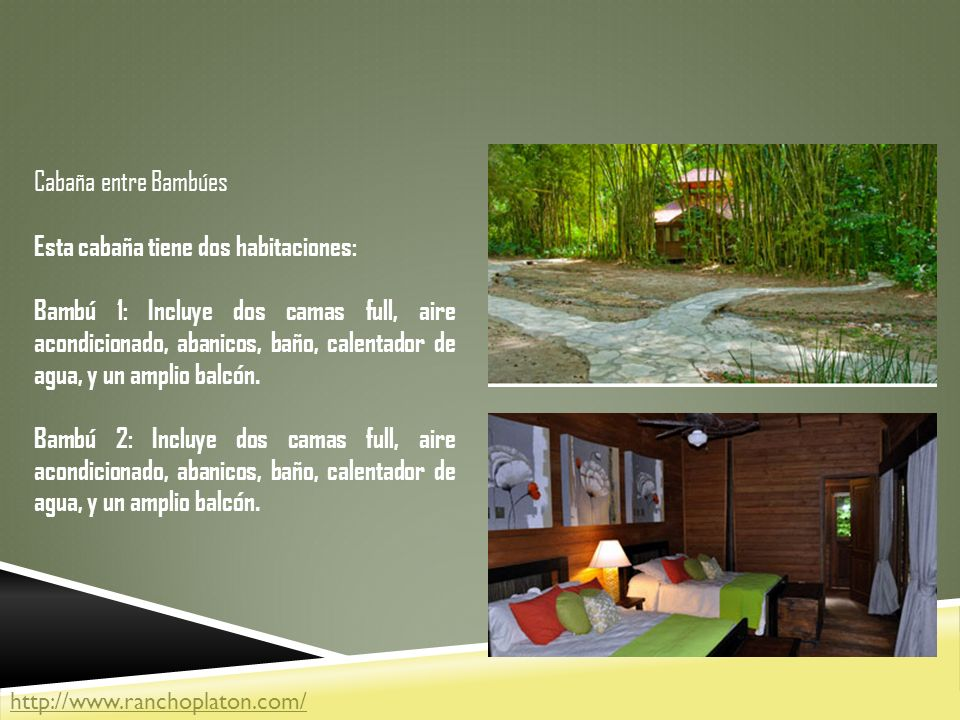 Cabaña entre Bambúes Esta cabaña tiene dos habitaciones: Bambú 1: Incluye dos camas full, aire acondicionado, abanicos, baño, calentador de agua, y un amplio balcón.