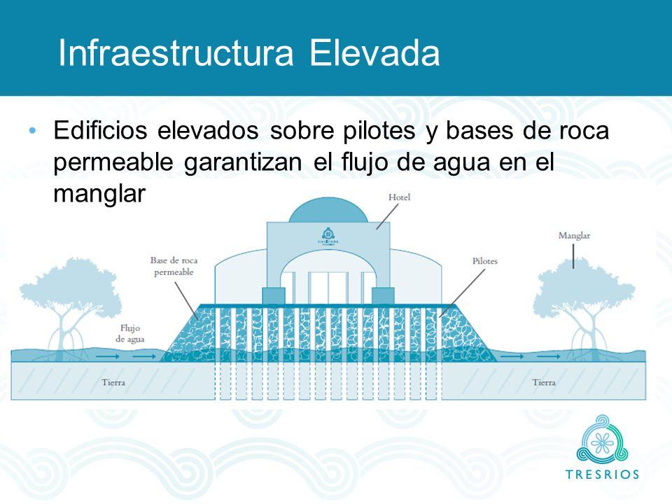 Infraestructura Elevada Edificios elevados sobre pilotes y bases de roca permeable garantizan el flujo de agua en el manglar
