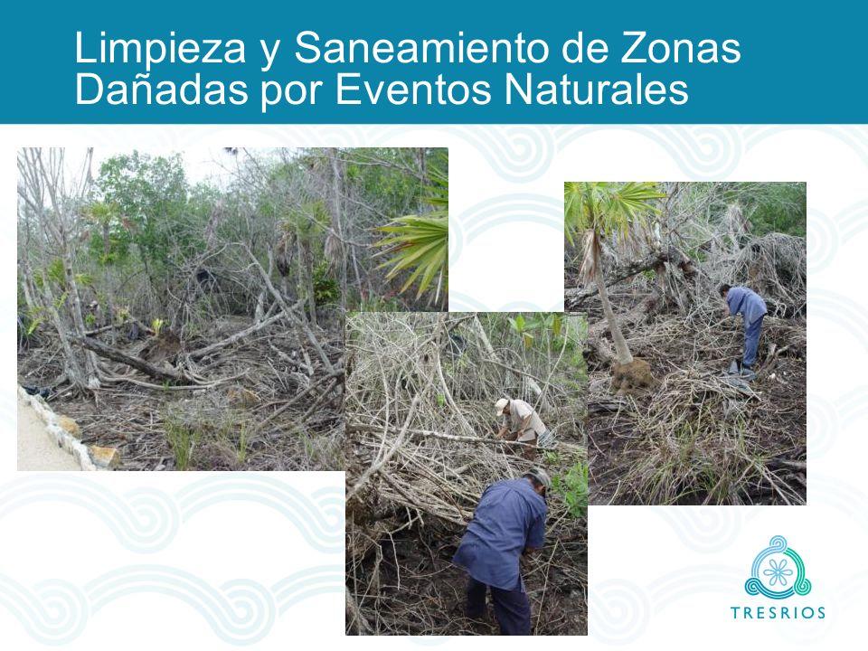 Limpieza y Saneamiento de Zonas Dañadas por Eventos Naturales