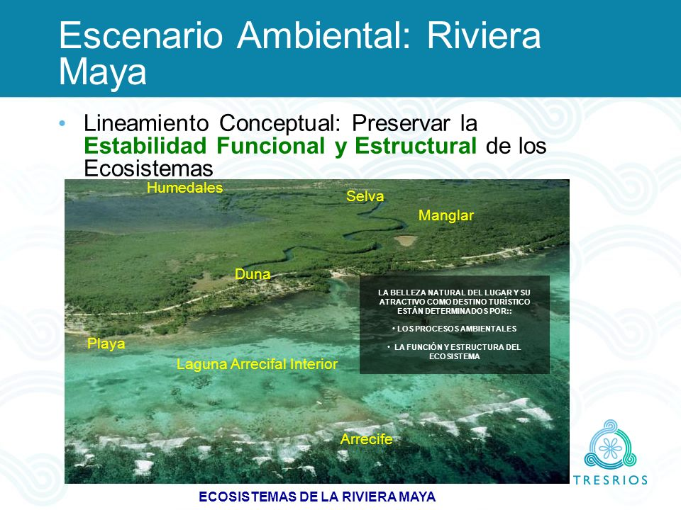 ECOSISTEMAS DE LA RIVIERA MAYA Arrecife Laguna Arrecifal Interior Duna Playa Humedales Selva Manglar LA BELLEZA NATURAL DEL LUGAR Y SU ATRACTIVO COMO