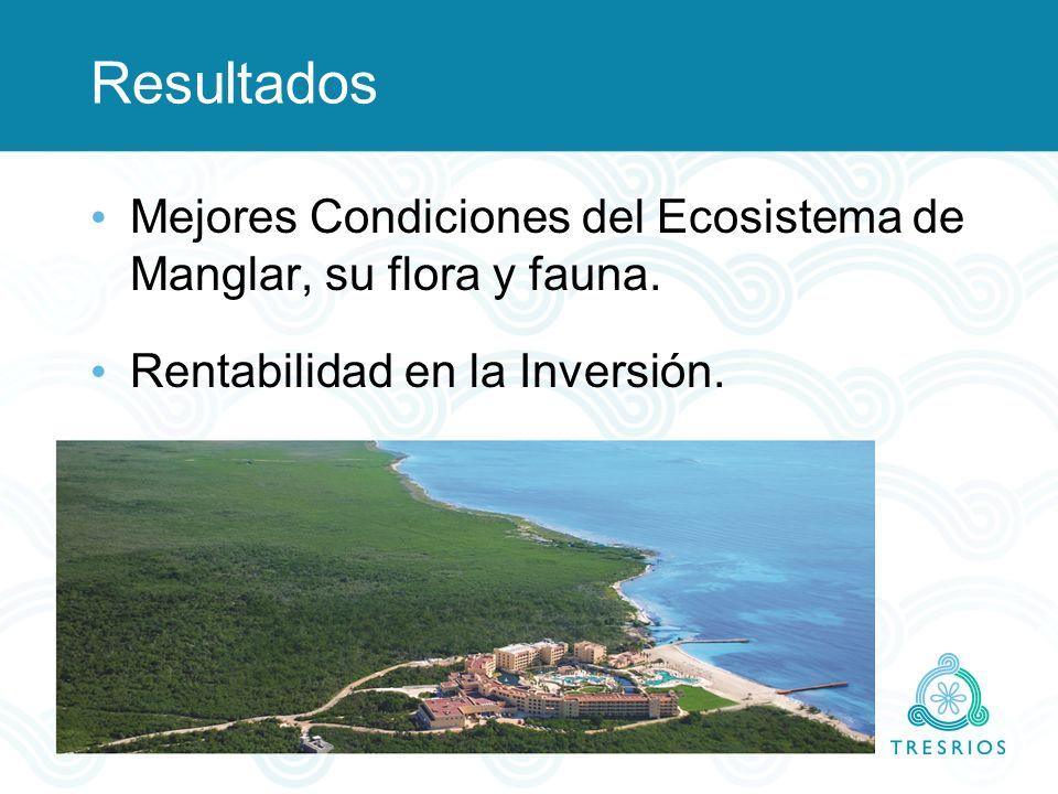 Resultados Mejores Condiciones del Ecosistema de Manglar, su flora y fauna. Rentabilidad en la Inversión.