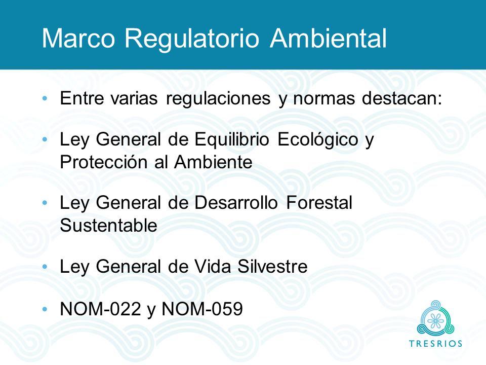 Marco Regulatorio Ambiental Entre varias regulaciones y normas destacan: Ley General de Equilibrio Ecológico y Protección al Ambiente Ley General de D