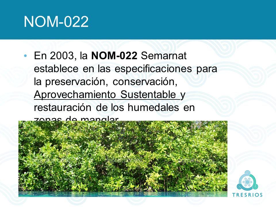 NOM-022 En 2003, la NOM-022 Semarnat establece en las especificaciones para la preservación, conservación, Aprovechamiento Sustentable y restauración