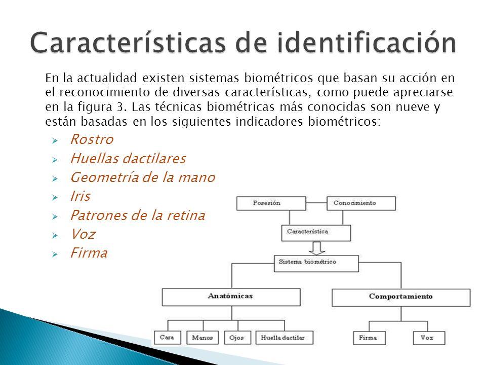 En la actualidad existen sistemas biométricos que basan su acción en el reconocimiento de diversas características, como puede apreciarse en la figura