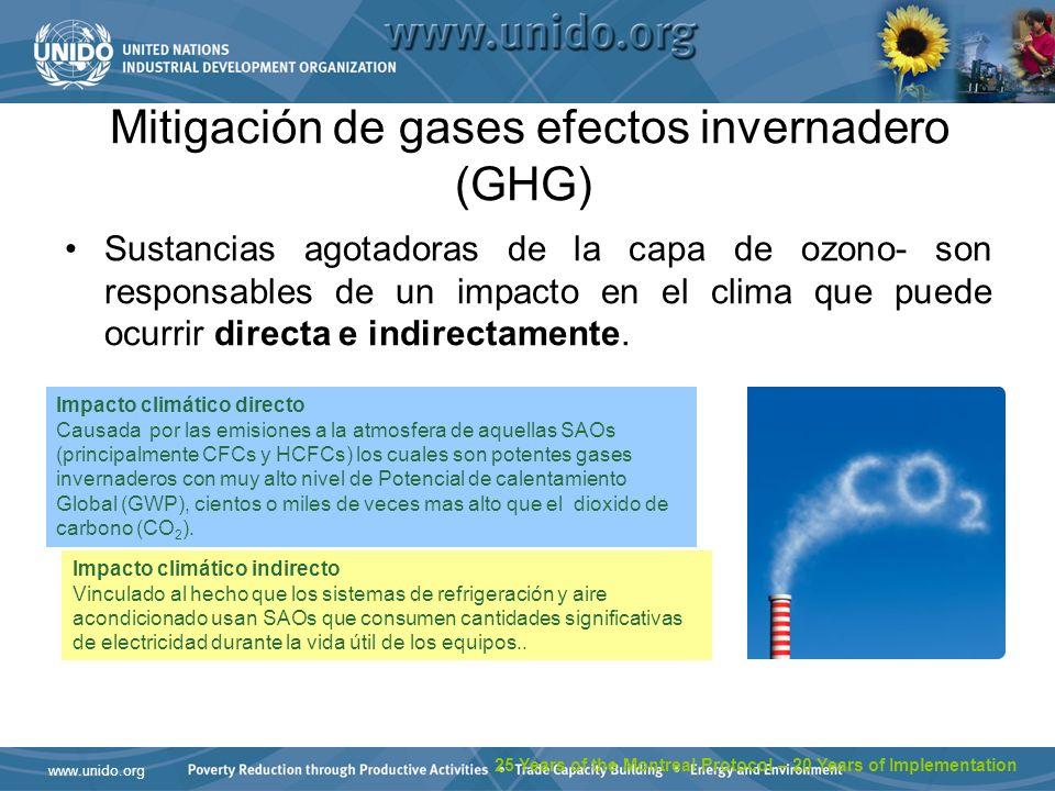 www.unido.org Mitigación de gases efectos invernadero (GHG) Sustancias agotadoras de la capa de ozono- son responsables de un impacto en el clima que puede ocurrir directa e indirectamente.