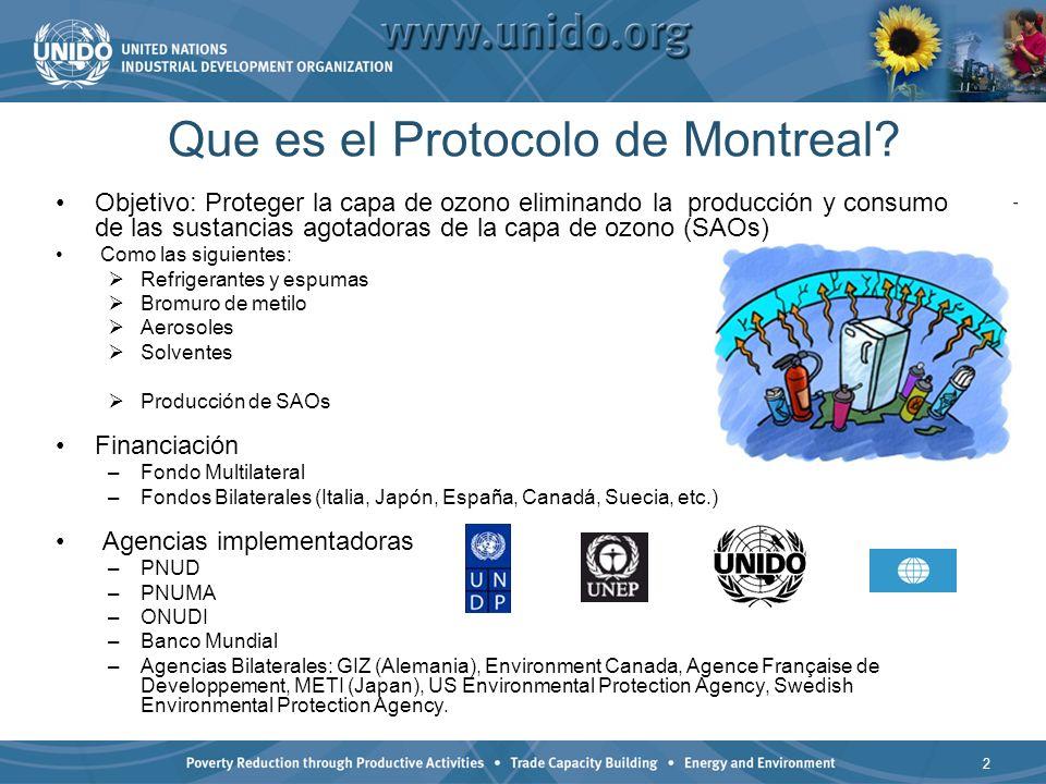 Objetivo: Proteger la capa de ozono eliminando la producción y consumo de las sustancias agotadoras de la capa de ozono (SAOs) Como las siguientes: Refrigerantes y espumas Bromuro de metilo Aerosoles Solventes Producción de SAOs Financiación –Fondo Multilateral –Fondos Bilaterales (Italia, Japón, España, Canadá, Suecia, etc.) Agencias implementadoras –PNUD –PNUMA –ONUDI –Banco Mundial –Agencias Bilaterales: GIZ (Alemania), Environment Canada, Agence Française de Developpement, METI (Japan), US Environmental Protection Agency, Swedish Environmental Protection Agency.