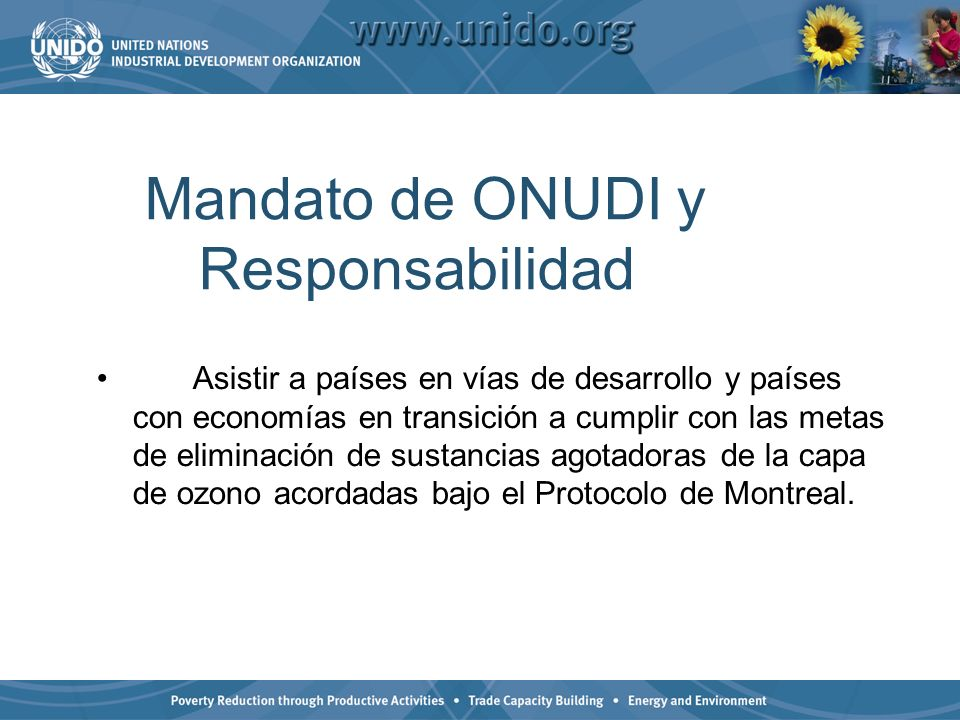 Mandato de ONUDI y Responsabilidad Asistir a países en vías de desarrollo y países con economías en transición a cumplir con las metas de eliminación de sustancias agotadoras de la capa de ozono acordadas bajo el Protocolo de Montreal.