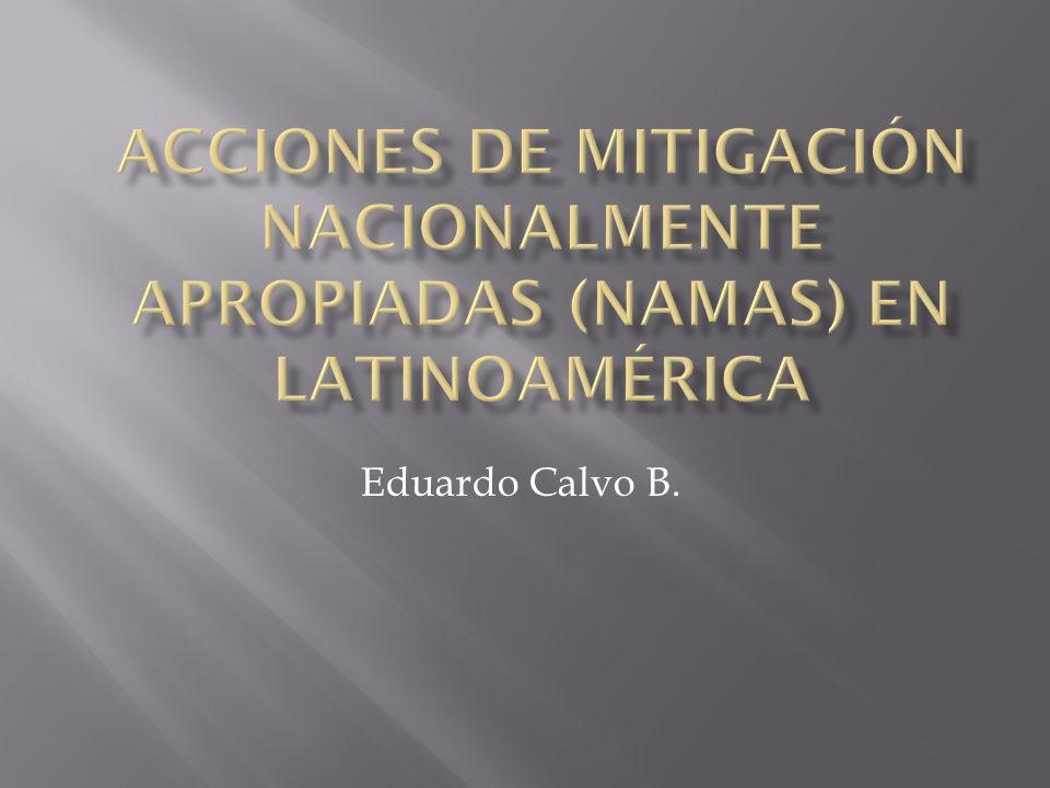 Eduardo Calvo B.