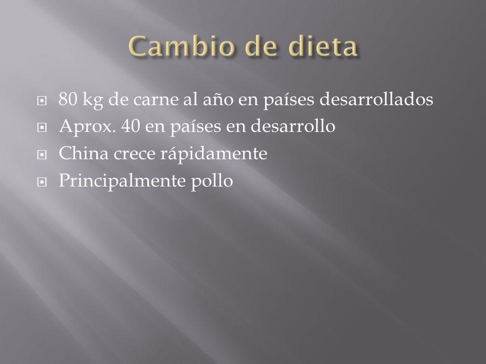 80 kg de carne al año en países desarrollados Aprox.
