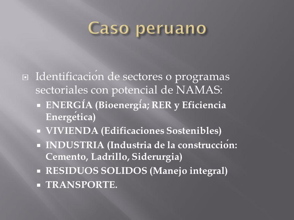 Identificacion de sectores o programas sectoriales con potencial de NAMAS: ENERGIA (Bioenergia; RER y Eficiencia Energetica) VIVIENDA (Edificaciones Sostenibles) INDUSTRIA (Industria de la construccion: Cemento, Ladrillo, Siderurgia) RESIDUOS SOLIDOS (Manejo integral) TRANSPORTE.