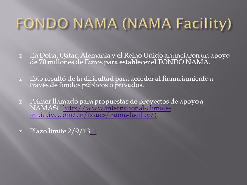 En Doha, Qatar, Alemania y el Reino Unido anunciaron un apoyo de 70 millones de Euros para establecer el FONDO NAMA.