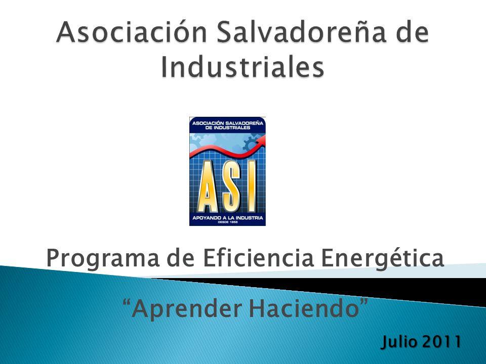 En el año 2008 se plantea la elaboración de un Programa de Eficiencia Energética en las Industrias que responde a las expectativas del sector y del país.
