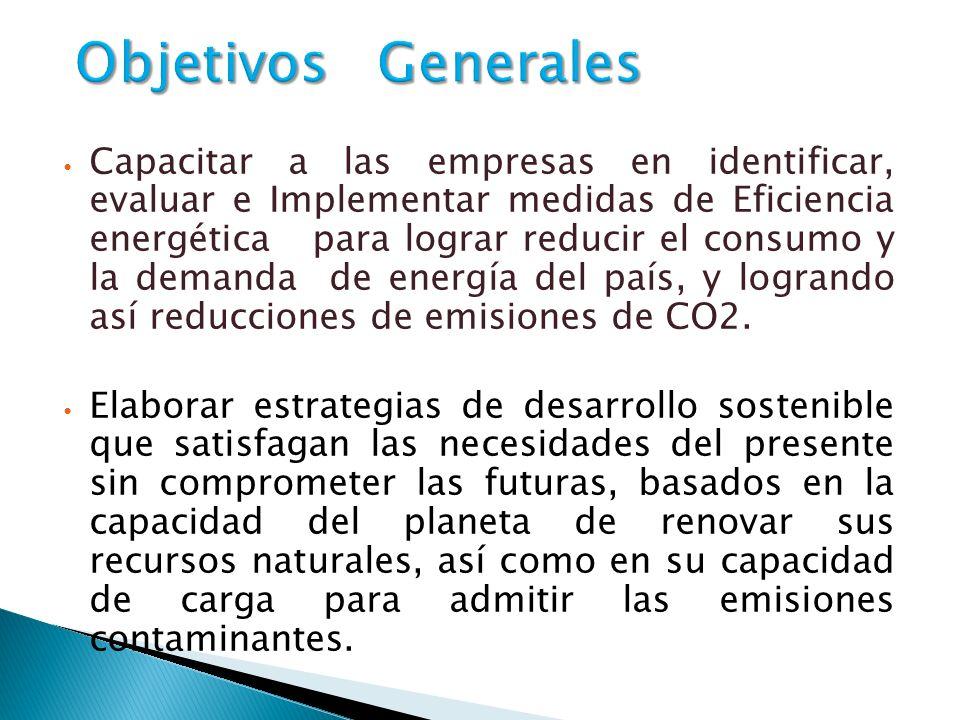 Capacitar a las empresas en identificar, evaluar e Implementar medidas de Eficiencia energética para lograr reducir el consumo y la demanda de energía del país, y logrando así reducciones de emisiones de CO2.