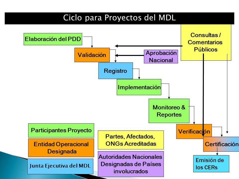 Elaboración del PDD Registro Implementación Monitoreo & Reportes Validación Verificación Certificación Participantes Proyecto Entidad Operacional Designada Consultas / Comentarios Públicos Autoridades Nacionales Designadas de Países involucrados Partes, Afectados, ONGs Acreditadas Aprobación Nacional Ciclo para Proyectos del MDL Junta Ejecutiva del MDL Emisión de los CERs