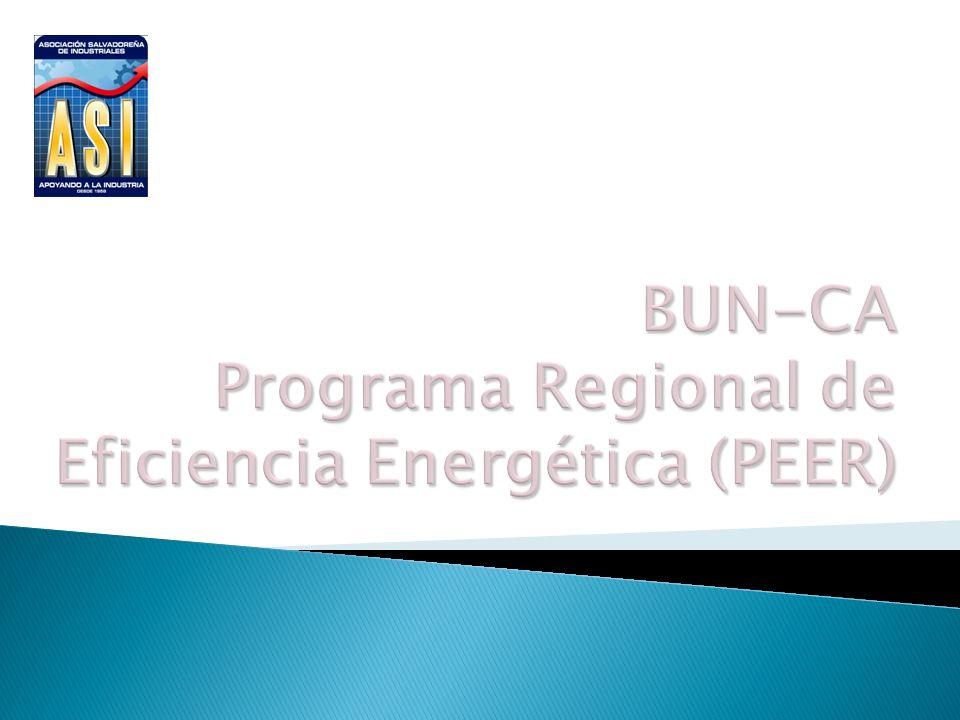 PARA LOS SECTORES INDUSTRIAL Y COMERCIAL EN AMÉRICA CENTRAL El Programa Regional de Eficiencia Energética para los Sectores Industrial y Comercial en América Central (PEER), Implementado por el Programa de Naciones Unidas (PNUD) y con el financiamiento del Fondo para el Medio ambiente Mundial (GEF) y cuyo Objetivo es identificar y remover las barreras que impiden el desarrollo de la eficiencia energética en los sectores Industriales y Comerciales a nivel regional, reduciendo así las emisiones de gases de efecto invernadero.