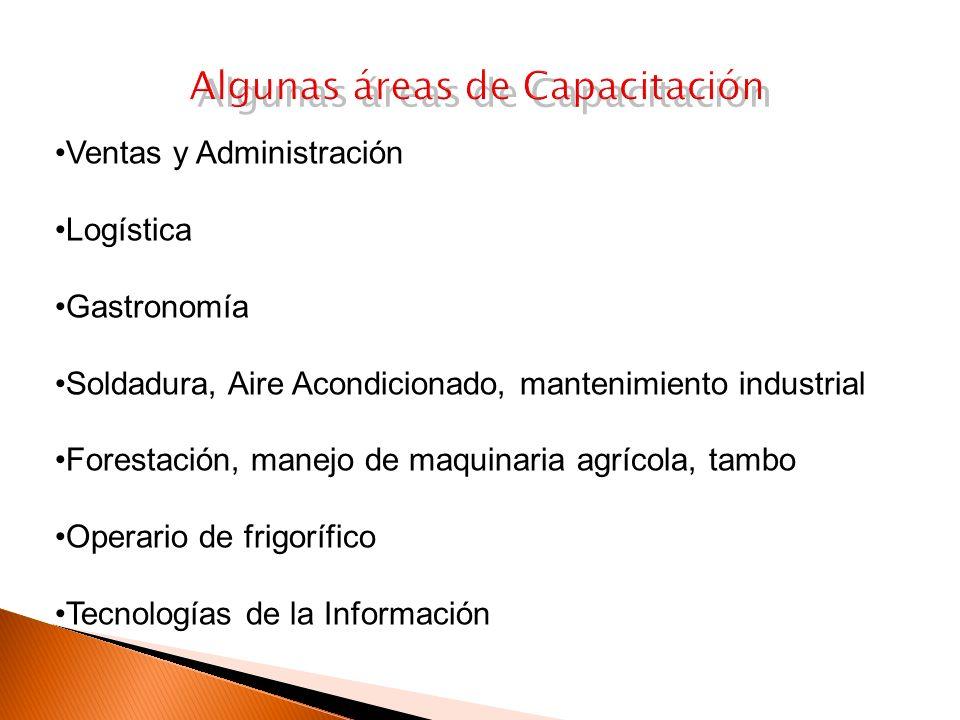 Algunas áreas de Capacitación Ventas y Administración Logística Gastronomía Soldadura, Aire Acondicionado, mantenimiento industrial Forestación, manejo de maquinaria agrícola, tambo Operario de frigorífico Tecnologías de la Información