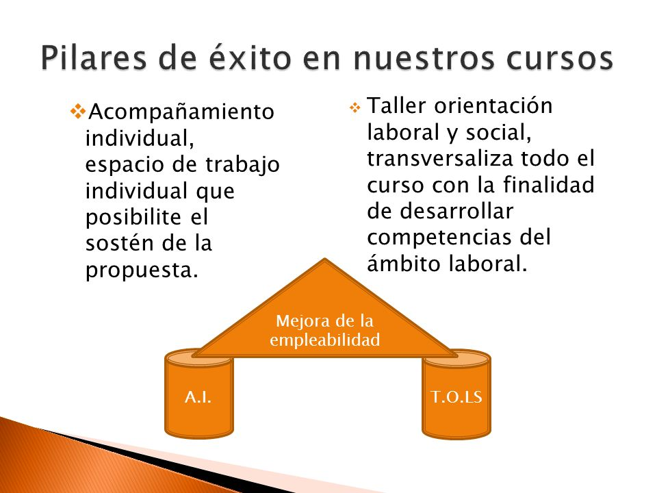 Acompañamiento individual, espacio de trabajo individual que posibilite el sostén de la propuesta. Taller orientación laboral y social, transversaliza