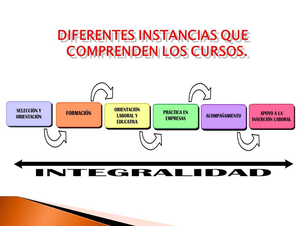 Componentes de los proyectos TOLS: Taller de Orientación Laboral y Social C.E: Capacitación Específica C.C: Capacitación Complementaria (Competencias básicas) APE: Aprendizaje Práctico en la Empresa
